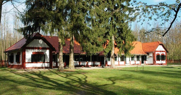 Tavaszköszöntő erdei túra a Sziágyi Erdészeti Erdei Iskolában