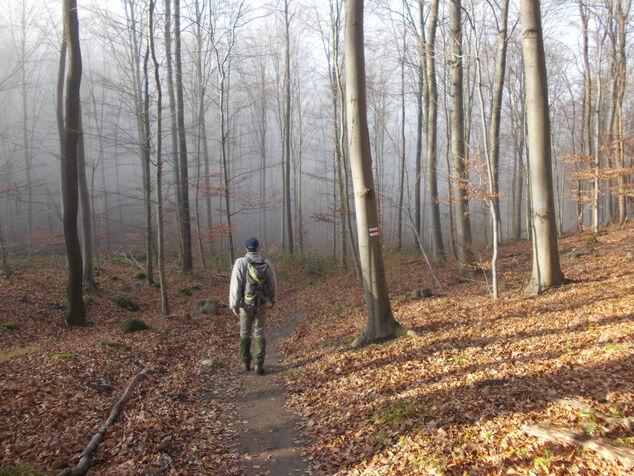 Barlangok hónapja: Kőkultúra a Hór-völgyben