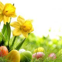 Húsvéti nyuszijárat az Almamelléki kisvasúton