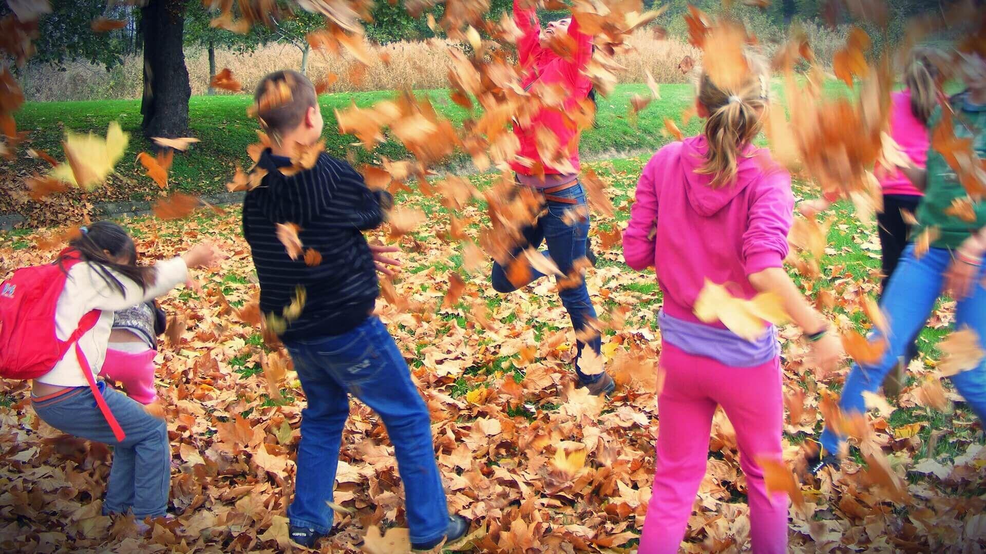Ravazdi Erdészeti Erdei Iskola