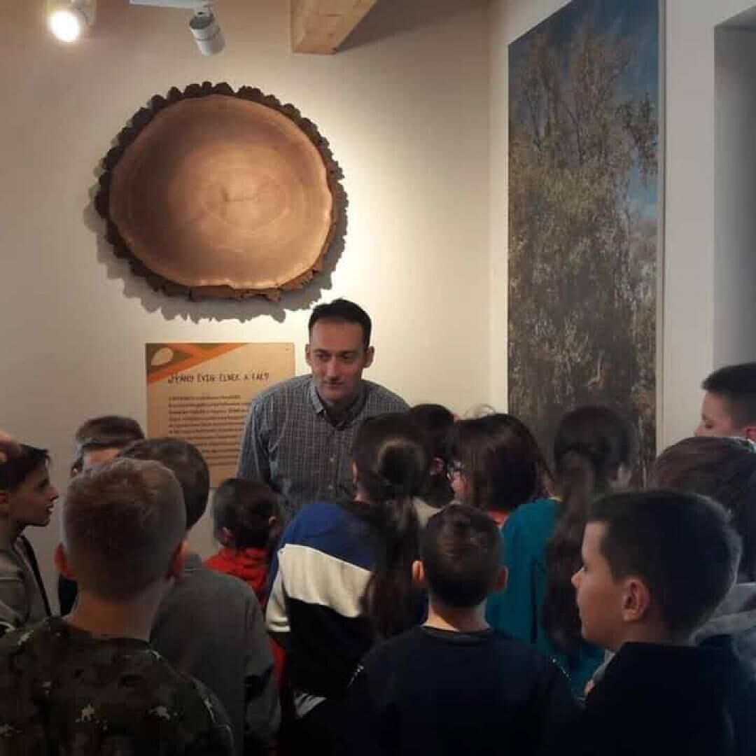 Muck Endre Erdészeti Erdei Iskola