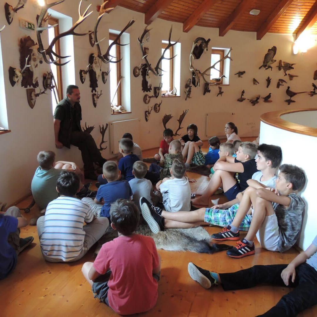 Vackor Vár Erdészeti Erdei Iskola