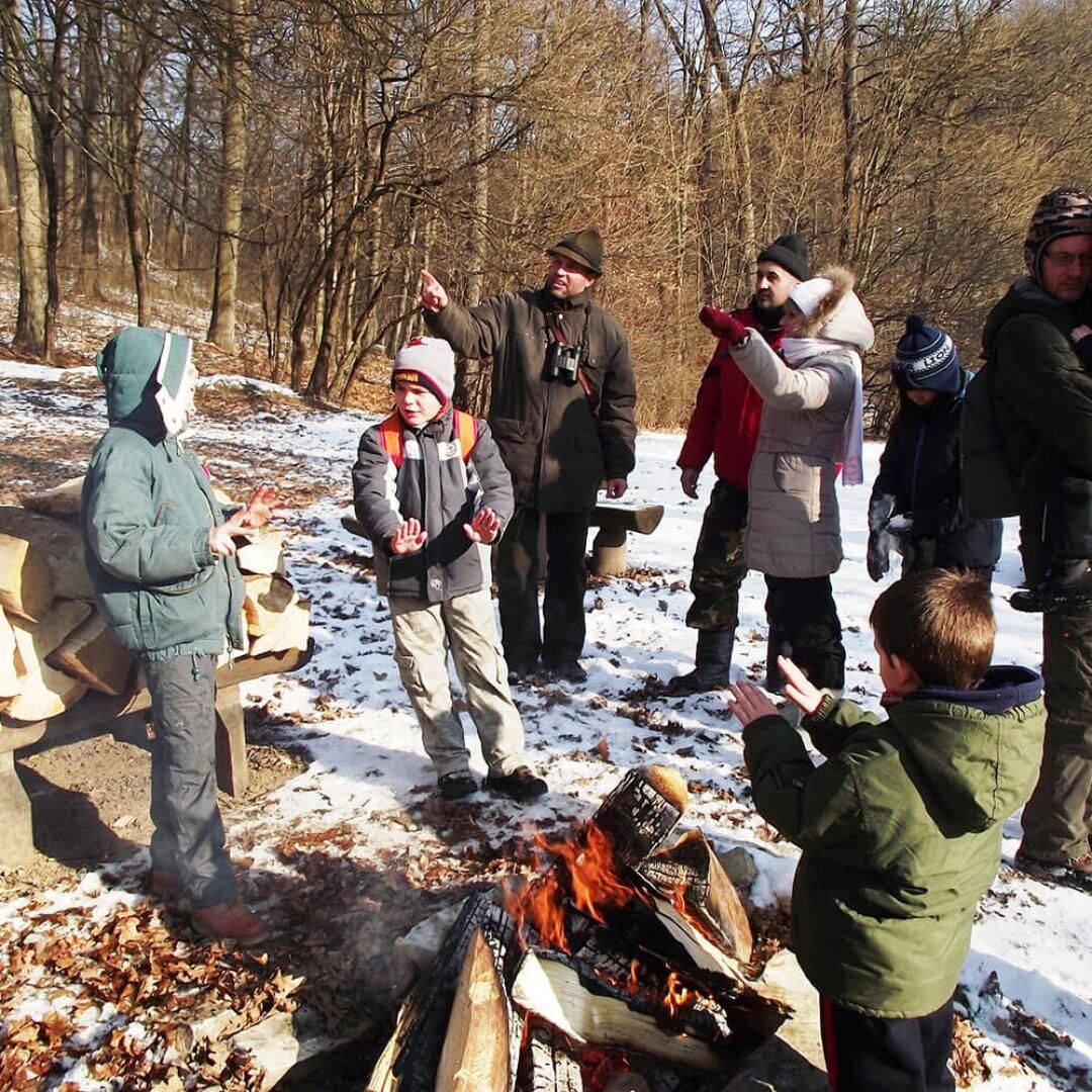 Bagoly-Vár Erdészeti Erdei Iskola