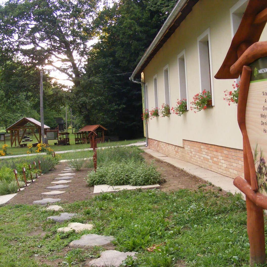 Kikerics Erdészeti Erdei Iskola