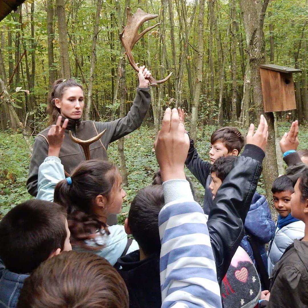 Erdészeti Erdei Iskola és Oktatási Központ Somogyszob