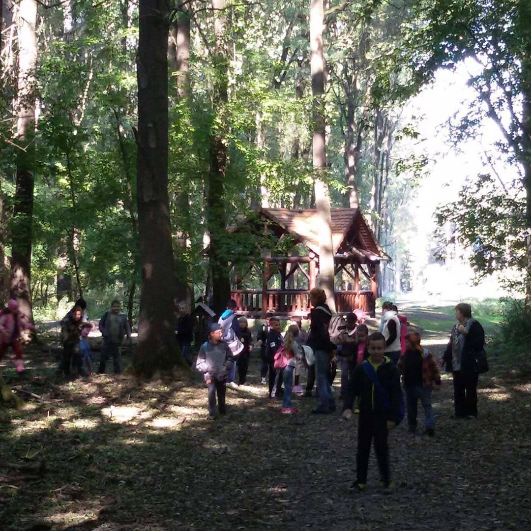 Gemenc Erdészeti Erdei Iskola