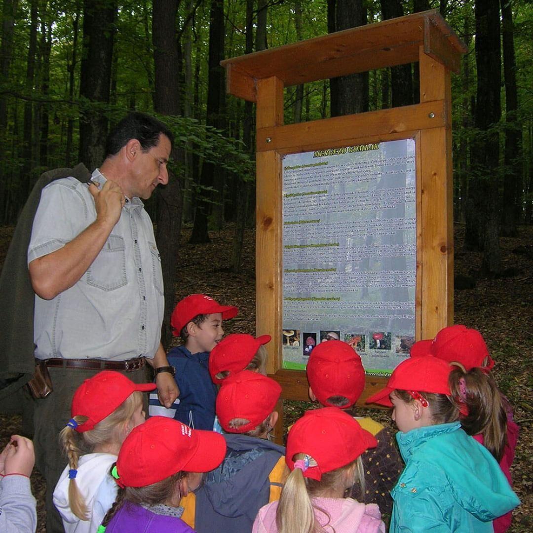 Mátrafüredi Erdészeti Erdei Iskola