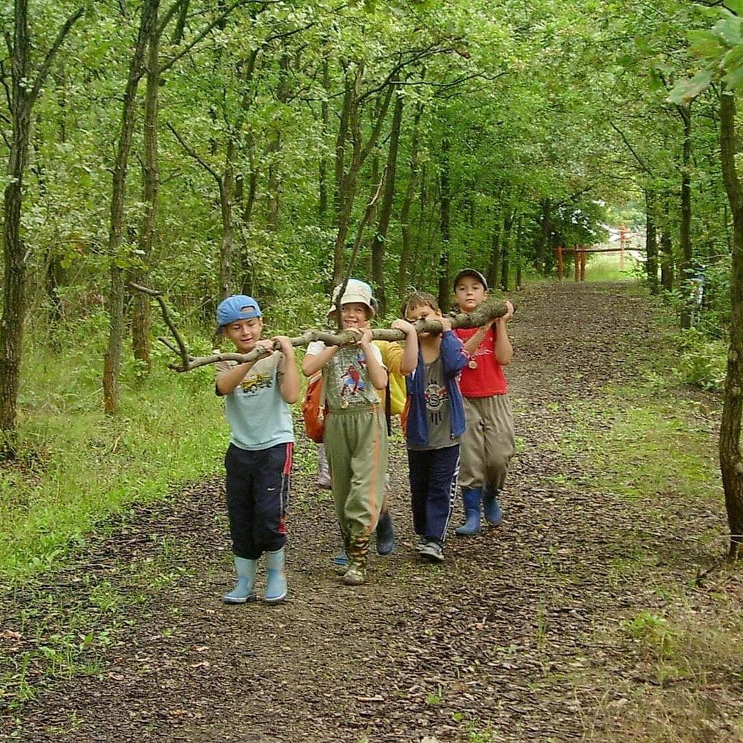 Erdei Művelődési Ház Erdészeti Erdei Iskola